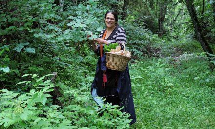 Cueillette et cuisine aux plantes sauvages A la rencontre des arbres